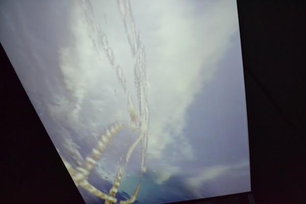 Vidéo projetée au plafond Pipilotti Rist