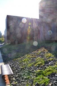 Le musée éclaboussé par le soleil