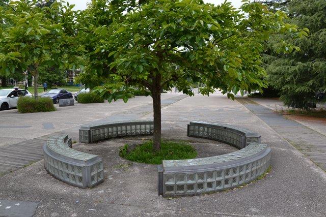 Jean-Luc Vilmouth Cette œuvre est constituée de quatre arbres fruitiers entourés de banc lumineux